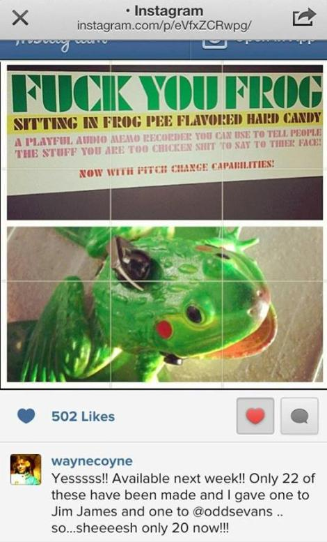 Audio Memo Frog